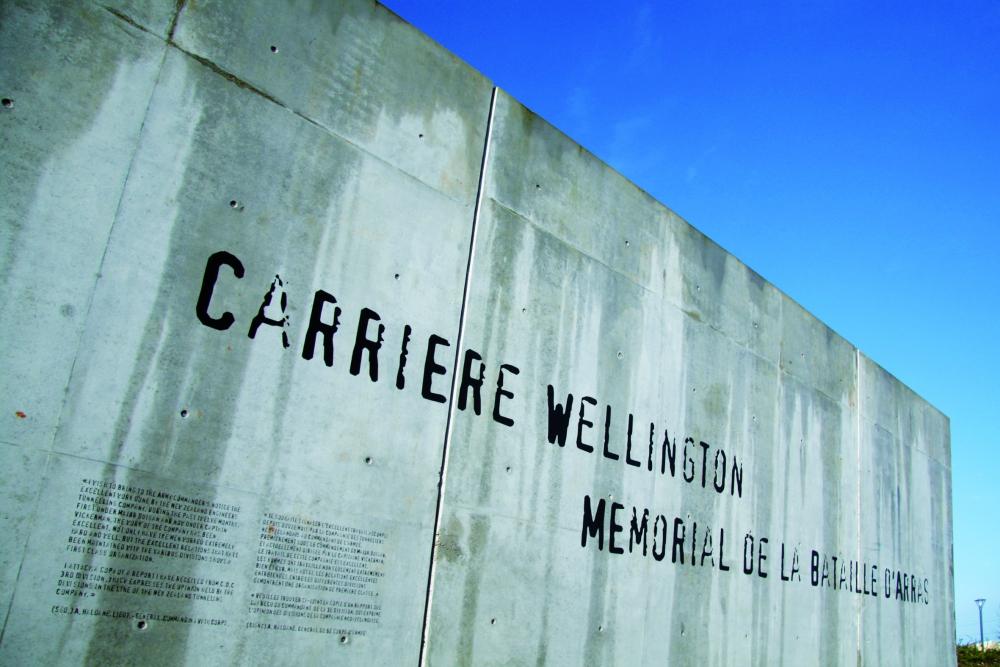 DE WELLINGTON STEENGROEVE